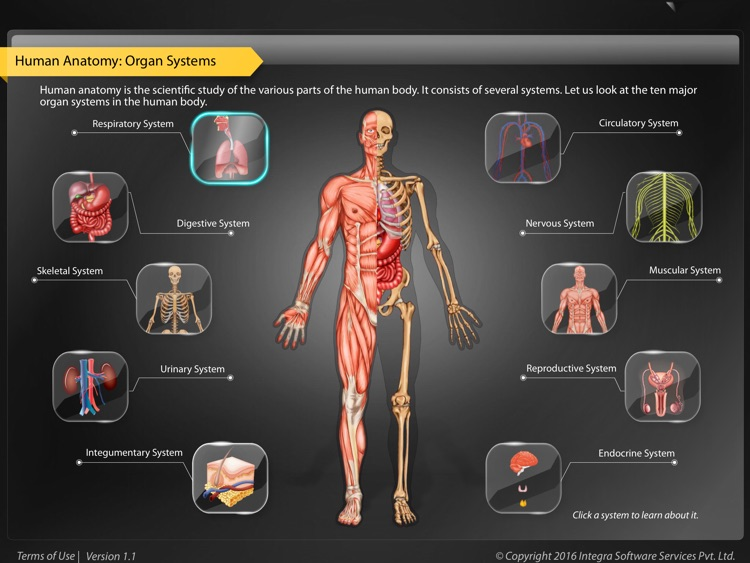 Human Anatomy Explorer screenshot-0