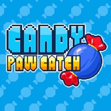 Activities of CandyPawCatch