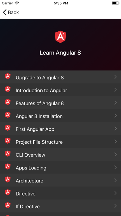 Development Guide for Angular screenshot 9
