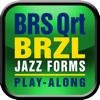 Fuzzy Music, LLC - BRS Quartet BRAZIL Play Along アートワーク