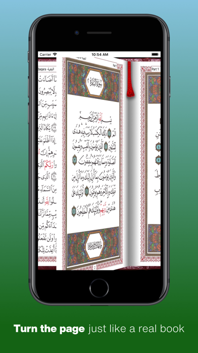 点击获取QuranMem