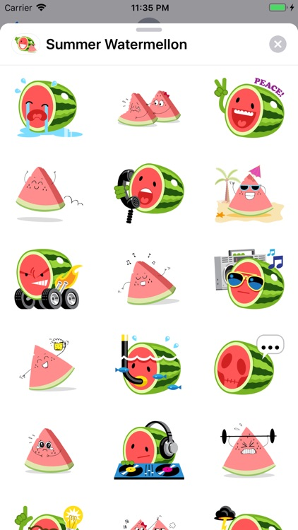 Summer Watermelon - Animated