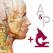 解剖学的構造と生理学
