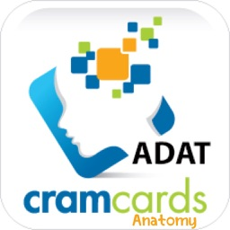 ADAT Anatomy Cram Cards