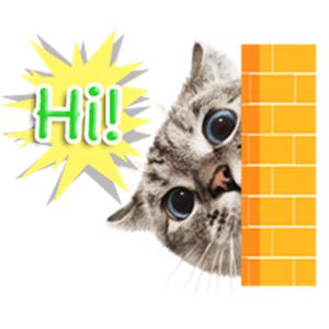 Nala Cat's Family Stickers - Stickers app