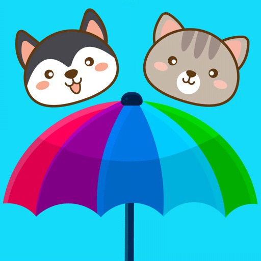 It's Raining Cats & Dogs!