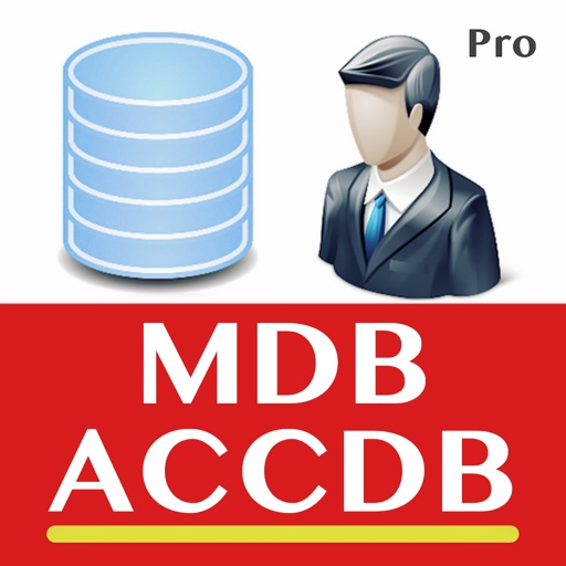 Editor for MS Access Database