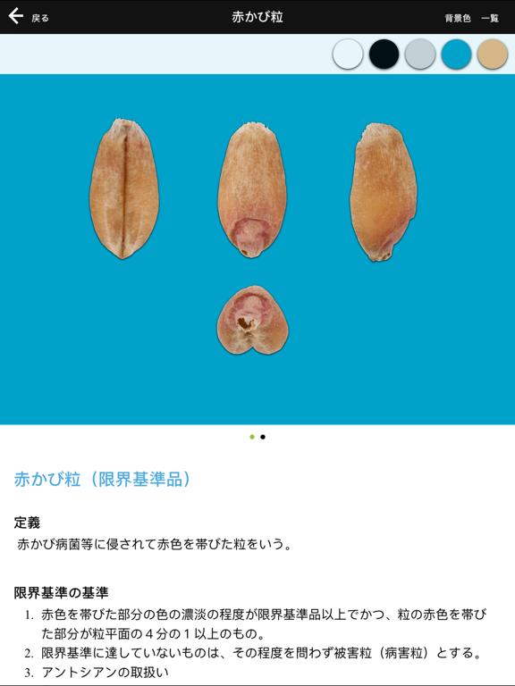 農産物検査標準品等 麦類のおすすめ画像4