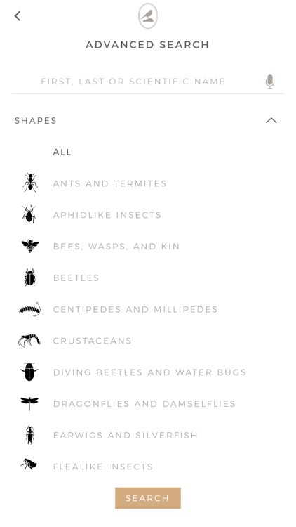 Fieldstone Guide: Insects screenshot-5