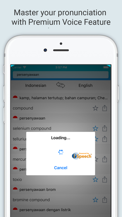 English Indonesian Dictionary+ screenshot 4