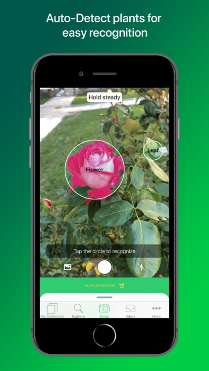 PlantSnap Pro: Identify Plants screenshot-1