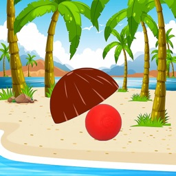 Find a Ball : Coconut Curumba
