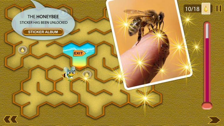Honey Tina and Bees screenshot-3