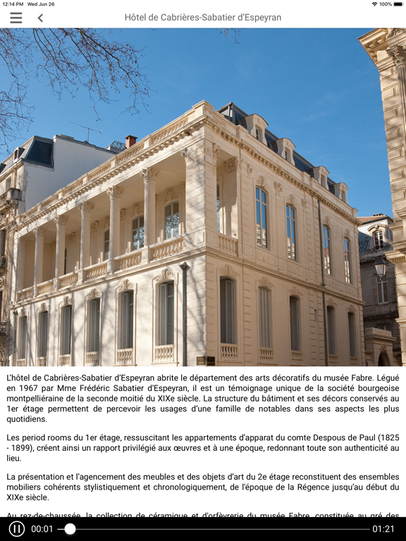 Hôtel Sabatier d'Espeyran screenshot 8