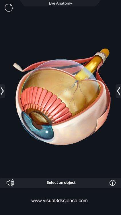 Human Anatomy screenshot-5