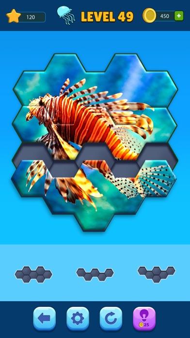 Hexa Jigsaw Puzzle™ screenshot 2