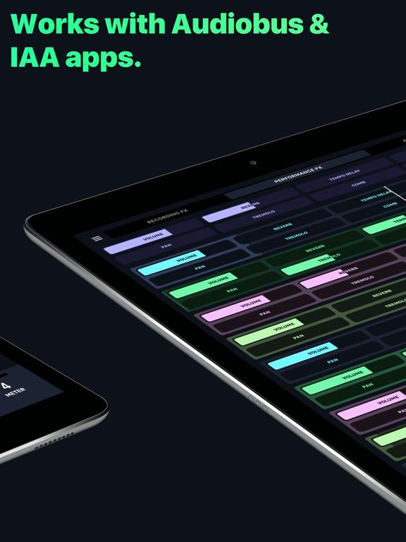 AudioKit L7 - AUv3 Live Looper