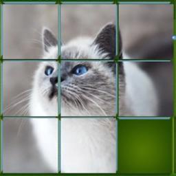 Magic Puzzle Animal