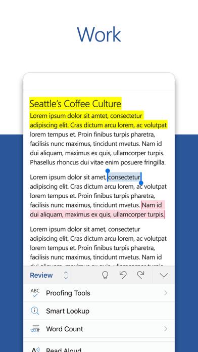 Microsoft Word screenshot three