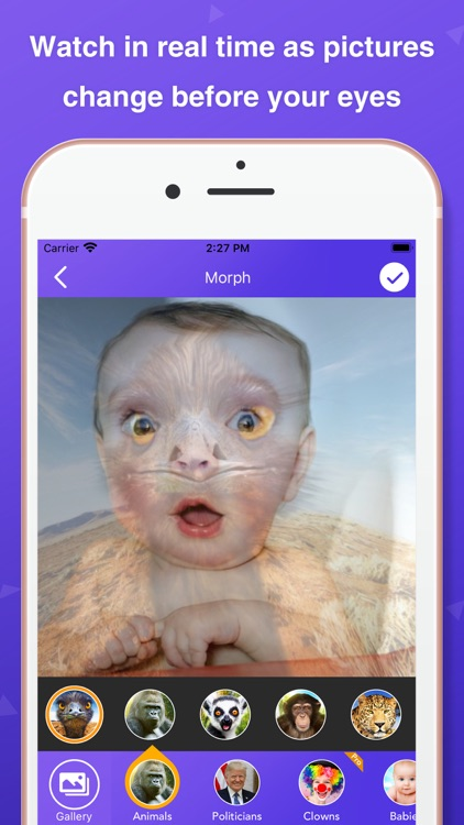 Pic Morph - Photo Face Swap