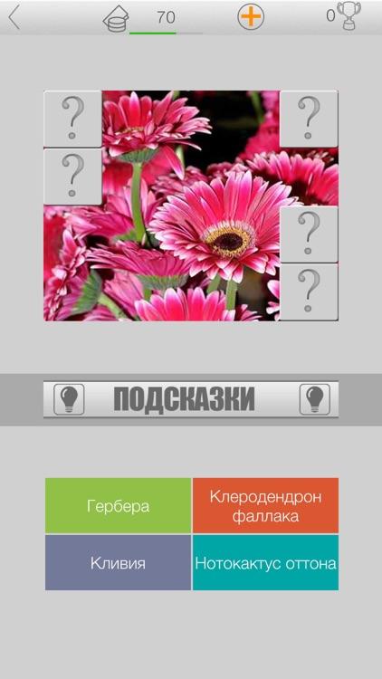 Ботаническая викторина screenshot-3