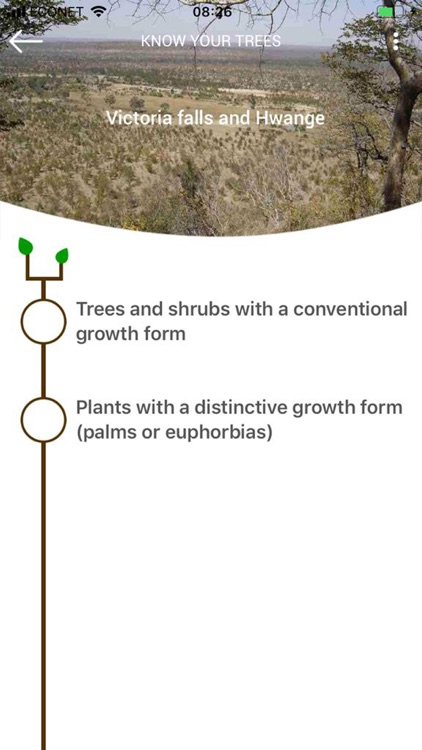 Key to Trees - Southern Africa screenshot-4