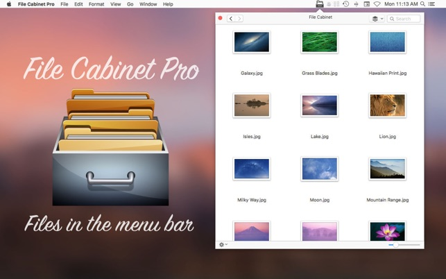 ‎File Cabinet Pro Screenshot