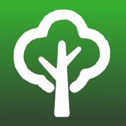 Tree Dictionary Pro