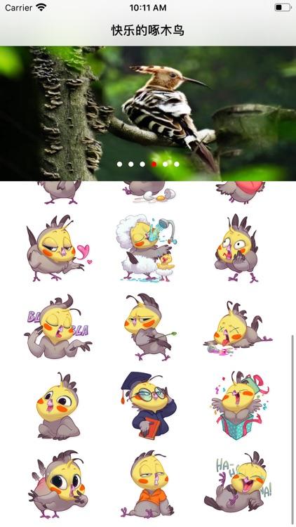 快乐的啄木鸟