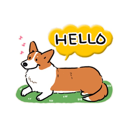 Welsh Corgi Dog