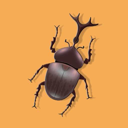 Insect Bugs Stickers
