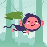 Codes for Fluffy Monkey Hack