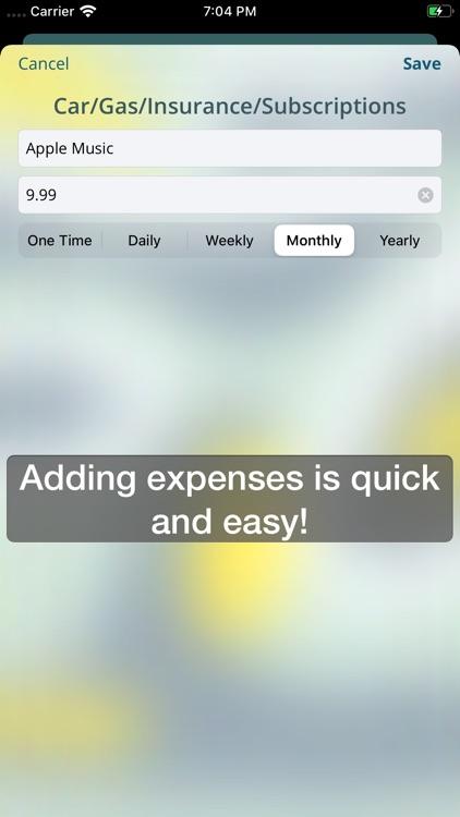Project Budget screenshot-7