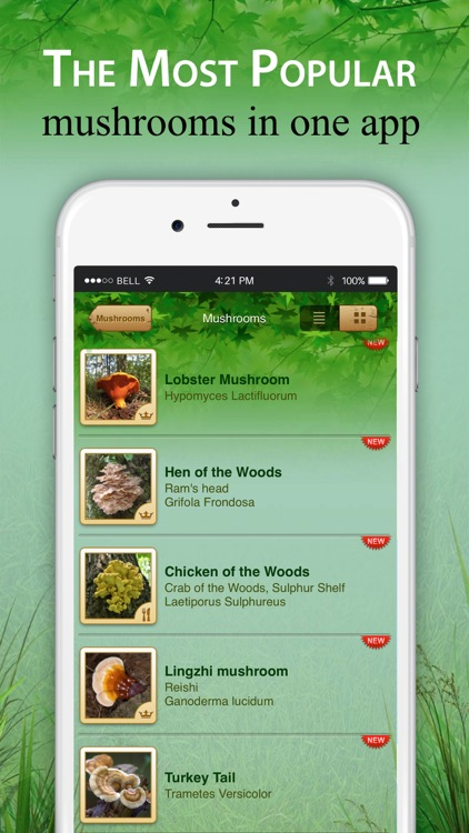 Mushroom Book & Identification screenshot-5