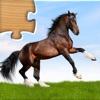 子供向けの動物パズルゲーム