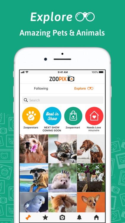 ZooPix: Where Cute Pets Rule screenshot-7