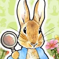 Codes for Peter Rabbit -Hidden World- Hack