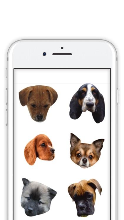 Precious Puppies screenshot-3