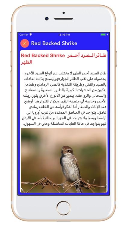 Birds of Jordan 2 screenshot-4