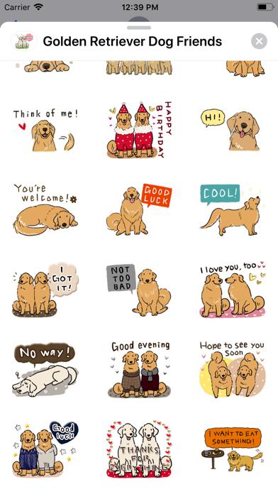 Golden Retriever Dog Friends screenshot 7