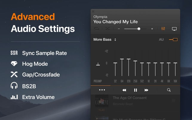 VOX: MP3 & FLAC Music Player on the Mac App Store