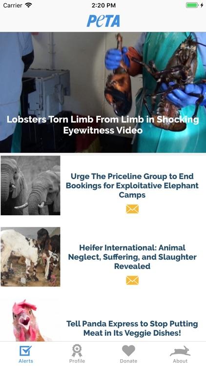 PETA: Saving Animals Made Easy