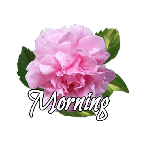 Morning Flowers - Animated icon