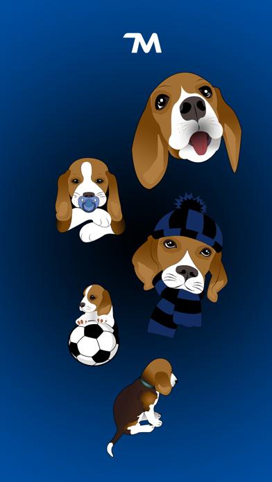 Beagle Bruno screenshot one