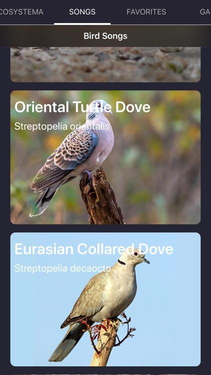 Bird Sounds and Bird Calls screenshot-7