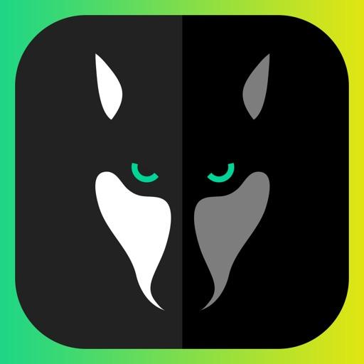 WOLFY - kurze Chat Geschichten