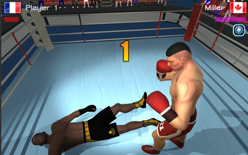 Boxing Championship for Mac