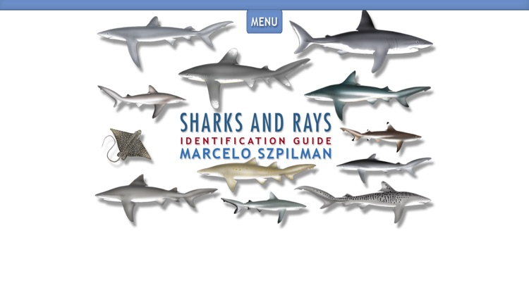 Sharks & Rays - ID Guide