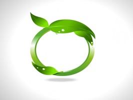 EcologyTL