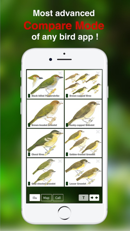 All Birds Colombia field guide screenshot-6